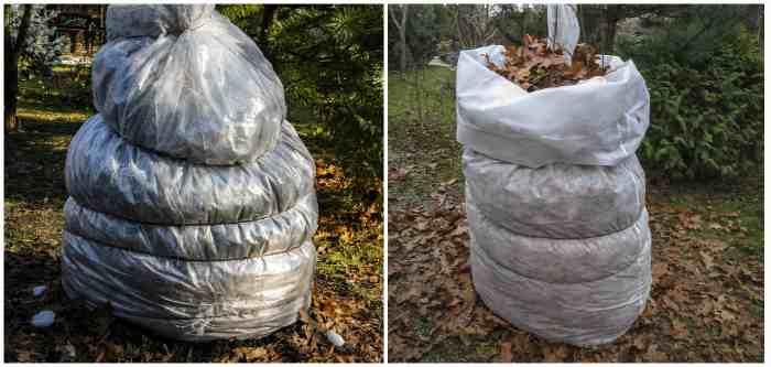 Зимняя защита для смоковницы