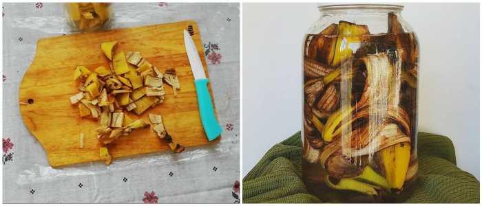 Настой с банановой кожурой для цветов